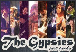 Gypsies hppct